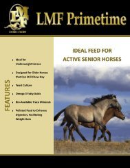 FEATURES - LMF Feeds
