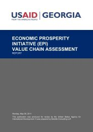 (epi) value chain assessment - Green Georgia
