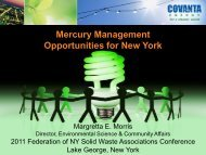 Mercury Management Opportunities for New York - Home for the ...