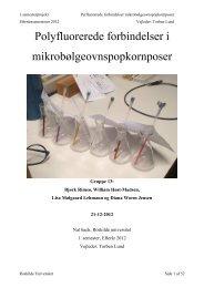 Polyfluorerede forbindelser, 1. semester, gruppe 13, færdig .pdf