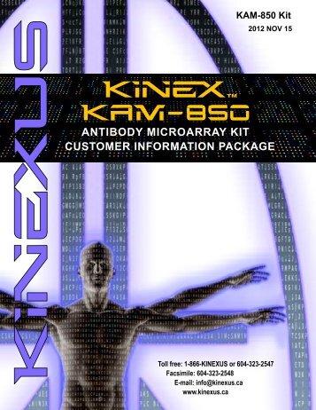 Download Kinex™ KAM-850 Antibody Microarray Kit Customer ...