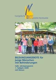 BILDUNGSANGEBOTE Für Junge Menschen Mit Behinderungen