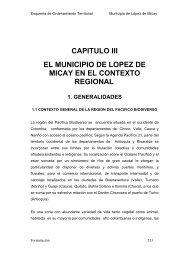 Diagnóstico - Corporación Autónoma Regional del Cauca