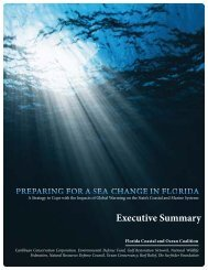 Executive Summary - Sea Turtle Conservancy