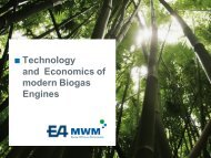 Technology and economics of modern biogas engines