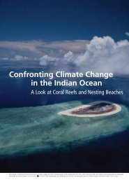 Confronting Climate Change in the Indian Ocean - The State of the ...
