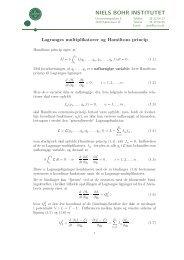 Lagranges multiplikatorer og Hamiltons princip - Niels Bohr Institutet