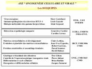 Axe 8 (en format .pdf 39,6 Ko)