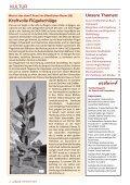 November 2012 Stadtteilmagazin für Osdorf und ... - Westwind - Seite 2