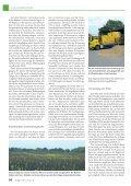Erfolgreicher Anbau und Verwertung von Ackerbohnen - Seite 5