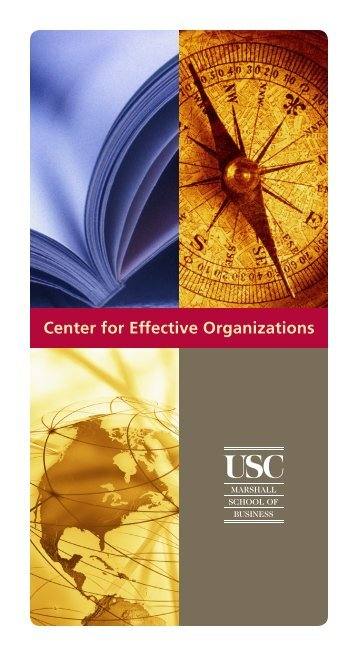 CEO Informational Folio - Center for Effective Organizations ...