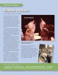 Timber Wolves - The Memphis Zoo - Page 7