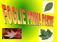 FOGLIE I parte - Icornagoburago.it