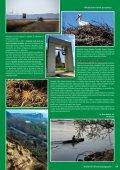 Ochrana prírody v prihraničnom území Bratislavy ... - GreenNet Project - Page 2