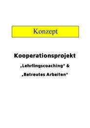 """Lehrlingscoaching"" & ""Betreutes Arbeiten"" - cisOnline"