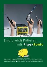 Erfolgreich Polieren mit Piggysonic - Die mit dem Sparschwein ...