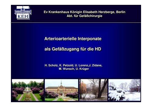 Vortrag (PDF-Datei) - Dialyseshunt