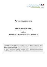 Annexe 4 - Référentiel métier et compétences - 1,04 Mb