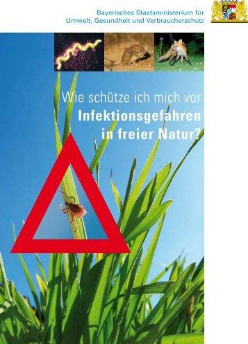 Infektionskrankheiten in freier Natur.pdf - bei der BJV Kreisgruppe ...