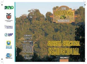 Floresta Estacional Semidecidual - Estado do Paraná