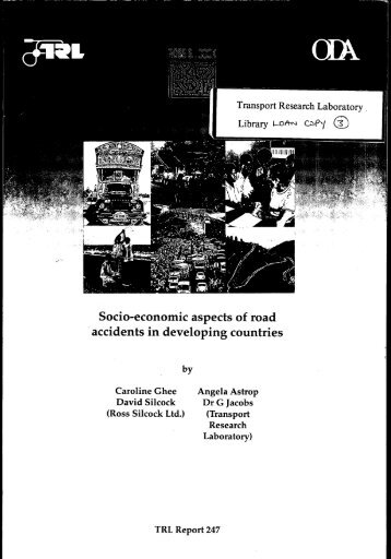 "Socio-economic aspects of road accidents in developing countries "" (I"