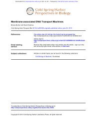 Membrane-associated DNA Transport Machines - Department of ...