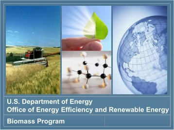 U.S. Department of Energy Office of Energy Efficiency and ...
