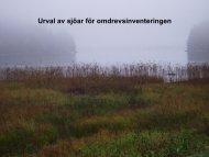 Upplägg av omdrevsprogrammet för sjöar - Vattenmyndigheterna