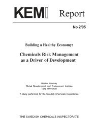 Building a Healthy Economy: Chemicals Risk ManagementAs a ...