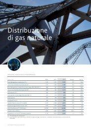 Distribuzione di gas naturale - Snam