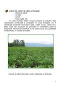 Brosura BIOMASA.pdf - Institutul National de Cercetare Dezvoltare ... - Page 7