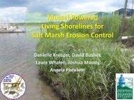 Mussel Powered Living Shorelines for Salt Marsh Erosion Control