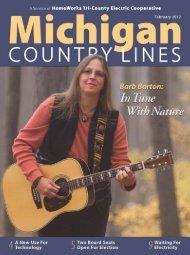 If - Michigan Country Lines Magazine