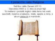 Il pistacchio nella Religione - Portale dell'innovazione