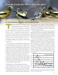 Winter Bird Highlights 2006 - Cornell Lab of Ornithology - Page 3