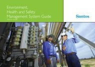 Environment, Health and Safety Management System Guide - Santos