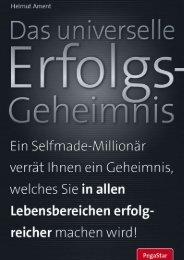 erfolg 00 (2010 Nachdruck) - Blog.de