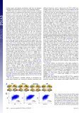 Coupling of functional connectivity and regional cerebral blood flow ... - Page 2