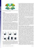 Coupling of functional connectivity and regional cerebral blood flow ... - Page 4