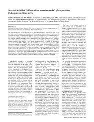 Survival in Soil of Colletotrichum acutatum and C ... - ResearchGate