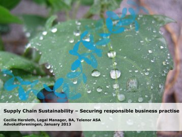 Supply Chain Sustainability – Securing responsible business practise