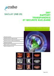 2007 RAPPORT TRANSPARENCE ET SECURITE ... - CEA Saclay