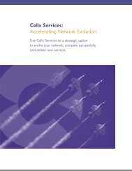 Calix Services: