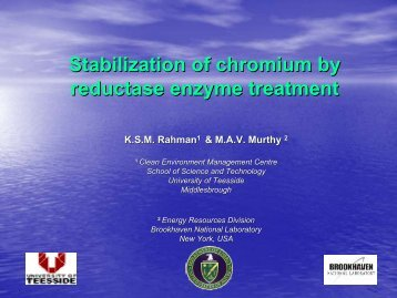 Stabilization of chromium by reductase enzyme treatment - Starnet