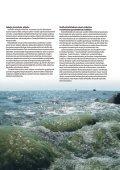 VVY toiminta 2005 - Page 5