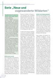 PDF-Artikel lesen