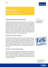 Fact Sheet No Flaring