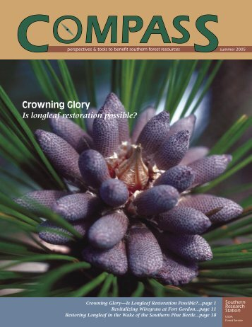 Download Compass, Summer 2005 (PDF) - Eastern Forest ...