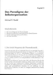 Das Paradigma der Selbstorganisation - dynamicearth.de