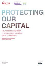 CDP-global-cities-report-2014